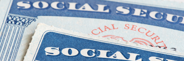 Two Social Security Cards